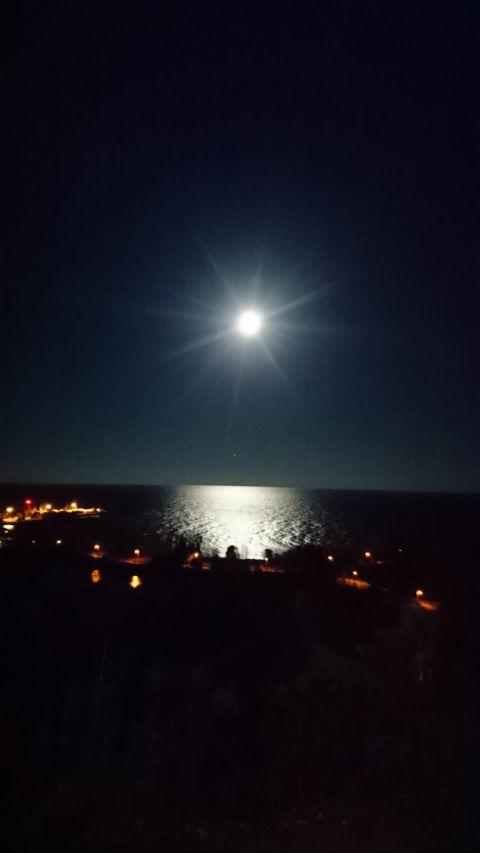 moon(スカボロー).JPG
