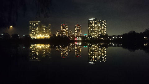 night view(high park).JPG