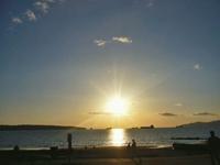 n_hasegawa2.jpg