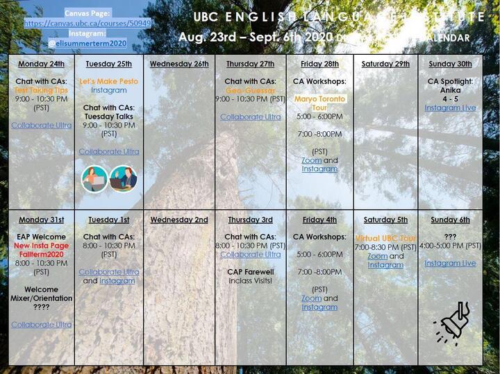 UBC_activity_sample.JPG