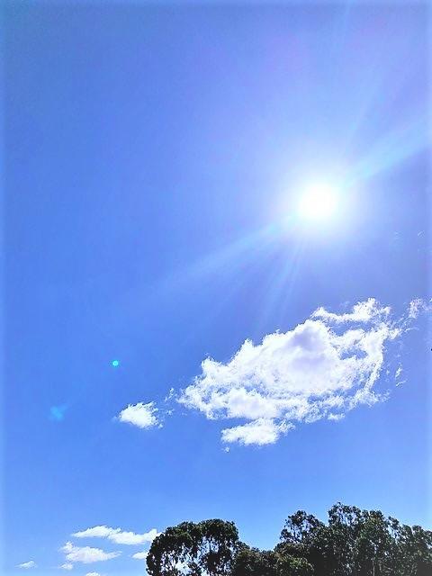 sun2_kakou.jpg