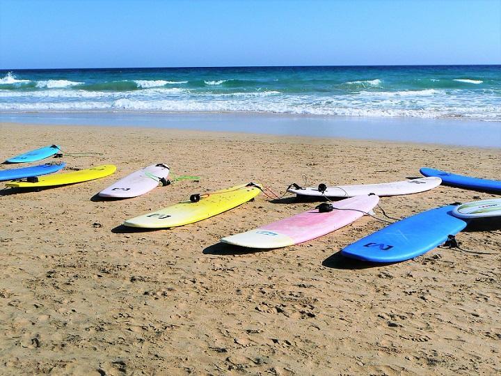 surfboards-753417_720.jpg
