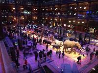 パリ_進化大陳列館_Grande Galerie de l'Evolution.JPG