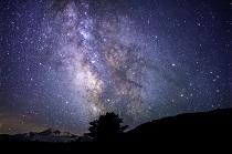 stars_nz.jpg
