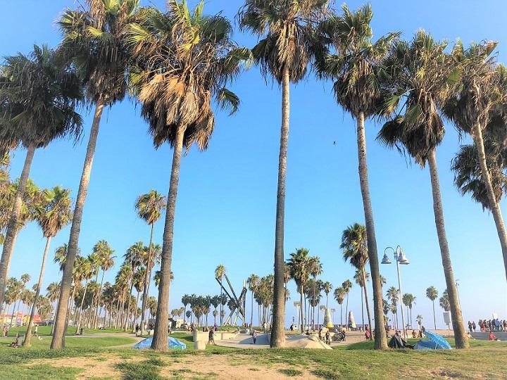 カリフォルニアのイメージ_720.jpg