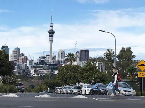 NZ_study2.jpg