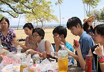 eleme_hawaii.png