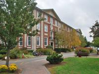 CDNY110_Adelphi University.jpg