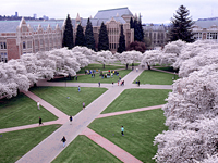 CDWA024_U of Washington.jpg