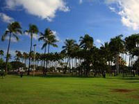 HawaiiTokai.jpg